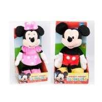 Mickey & Minnie Club House...