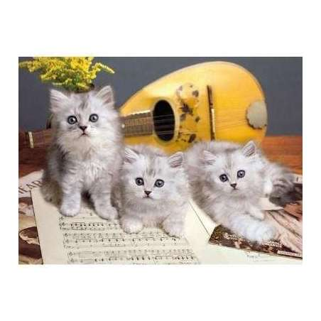 PUZZLE 1000 MUSICIAN CATS